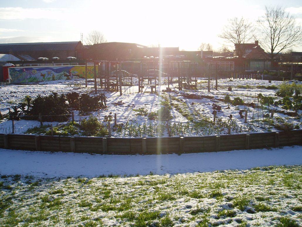 the gardens u2013 arkwright meadows community gardens